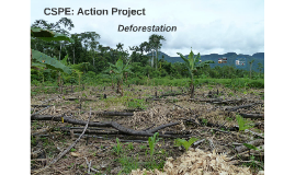 CSPE: Action Project