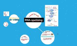 RNA-spelising