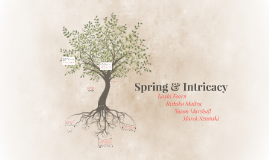 Spring & Intricacy