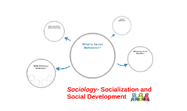 Sociology- Socialization and Social Development