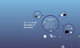 5èmè - E3 - Le circuit électrique