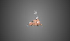 Copy of TEOG