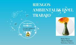 RIESGOS AMBIENTALES EN EL TRABAJO