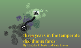 three years in the temperate deciduous forest