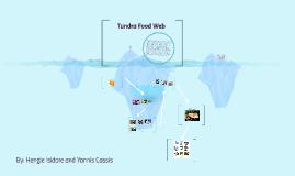 Copy of T undra Food Web