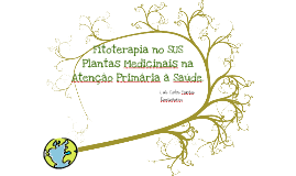 Copy of fitoterapia basic