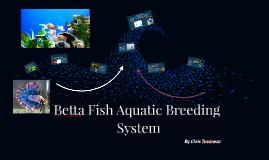 Betta Auqatic System
