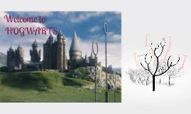 Copy of Hogwarts Appearances