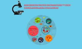 Mercimekten Protein Ekstraksiyonu ve Ürün Formülasyonlarına