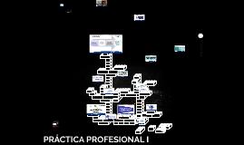 PRÁCTICA PROFESIONAL I