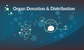 Organ Donation & Distribution