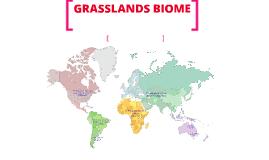 Copy of GRASSLANDS BIOME
