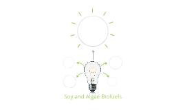 Algae and Soy Biofuels