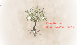 Early Human: Brain Evolution Timeline
