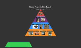 Energy Pyramid of the Desert