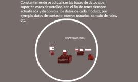 DESARROLLOS MSOL