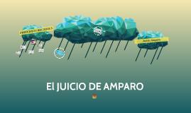 Copy of Juicio Amparo General