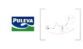 Copy of Puleva Omega 3 - Innovación y Diferenciación.