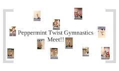 pepermint twist gymnastics meet 2010