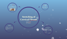 Stretching Cervical