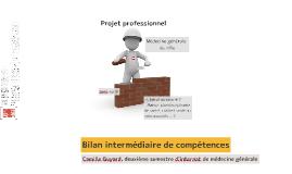 Bilan intermédiaire de compétences