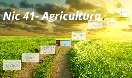 Copy of Nic 41- Agricultura
