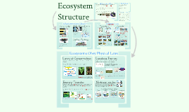 Copy of AP Bio- Ecology 4: Ecosystem Structure