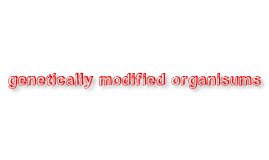 Copy of genetically modified organisms