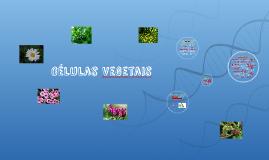 Copy of Células Vegetais