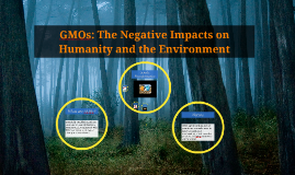 GMOs: The Negative Impacts on Humanity and the Environment