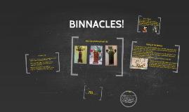 What is A Binnacle?