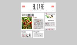EL CAFÉ DE COATEPEC