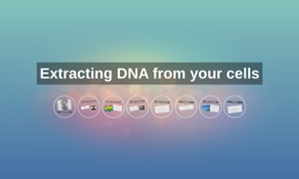 Extracting DNA from you cells