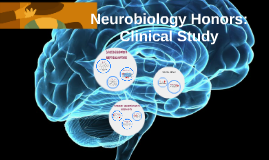 Neuro Honors: Clinical Study