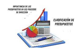 Importancia de los presupuestos en los procesos de direccion