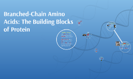 Branch Chained Amino Acids:101
