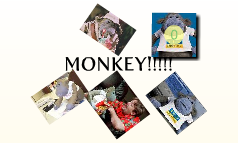 MONKEY!!!!!