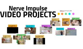Nerve Impulse - Student Projects 2016