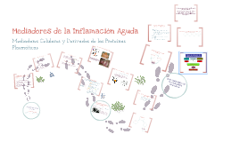 Copy of Mediadores de la inflamación celular