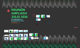 REUNIÓN AMPLIADA JULIO 2016