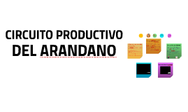 Copy of CIRCUITO PRODUCTIVO DEL ARANDANO