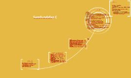 Samfundsfag C
