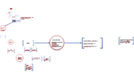 Copy of Teoria da Empresa