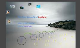 Copy of Copy of Book Report: Soul Surfer
