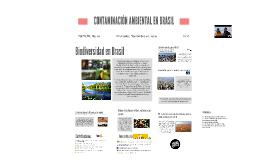 Contaminación ambiental en Brasil