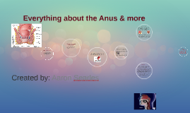 Everything about the Anus & more