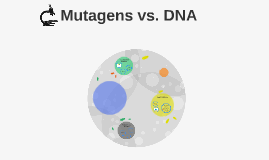 Mutagens vs. DNA