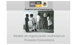 Modelo de organización multinivel en Educación Primaria del Conafe