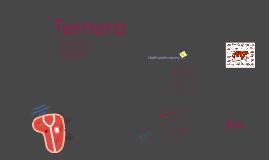 Copy of Ternera