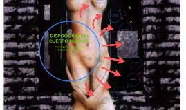 Copy of DISPOSICIÓN DEL CUERPO HUMANO